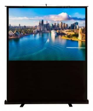 Экран Cactus FloorCompactExpert CS-PSFLCE-160X120