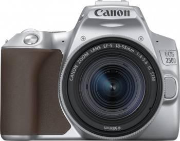 Фотоаппарат Canon EOS 250D серебристый, 1 объектив (3461C001)