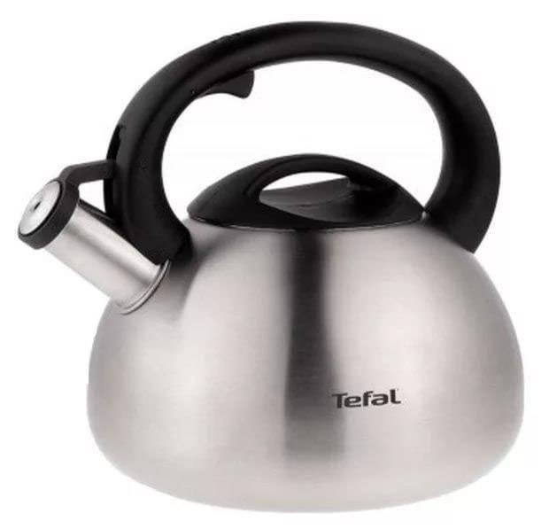 Чайник металлический Tefal C7921024 серебристый - фото 1