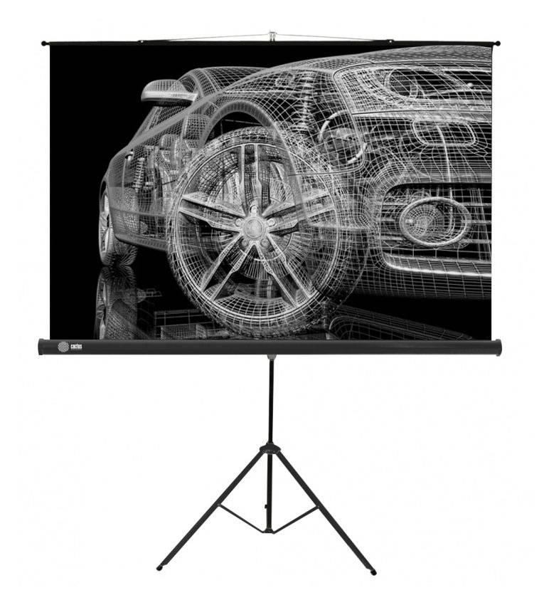 Экран Cactus Triscreen CS-PST-124x221 - фото 1