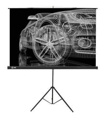 Экран Cactus Triscreen CS-PST-124x221