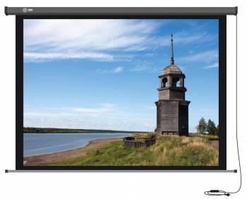 Экран Cactus Professional Motoscreen CS-PSPM-152X203