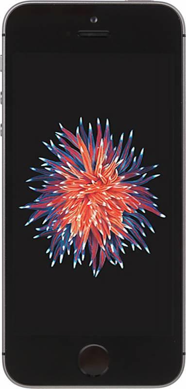 Смартфон Apple iPhone SE MP822RU/A 32ГБ серый - фото 1