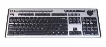 Клавиатура Chicony KU-0420 серебристый / черный