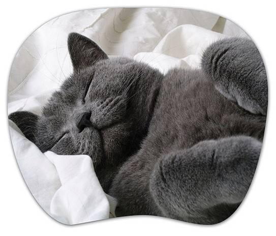 Коврик для мыши PC Pet MP-TMG Cat MP-TOM TURBO рисунок - фото 1