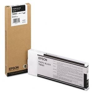 Картридж Epson T6061 фото черный (C13T606100)