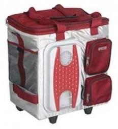 Автохолодильник Mystery MTH-40B белый / красный