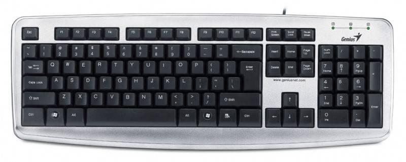 Клавиатура Genius KB110X серебристый/черный - фото 1