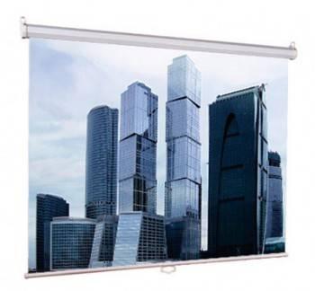 Экран Lumien Eco Picture LEP-100105