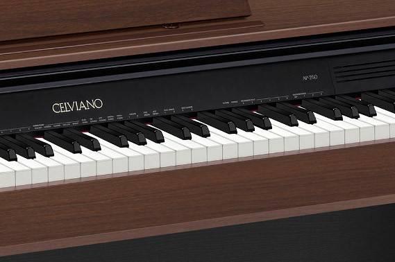 Цифровое фортепиано Casio CELVIANO AP-250ВN коричневый - фото 2