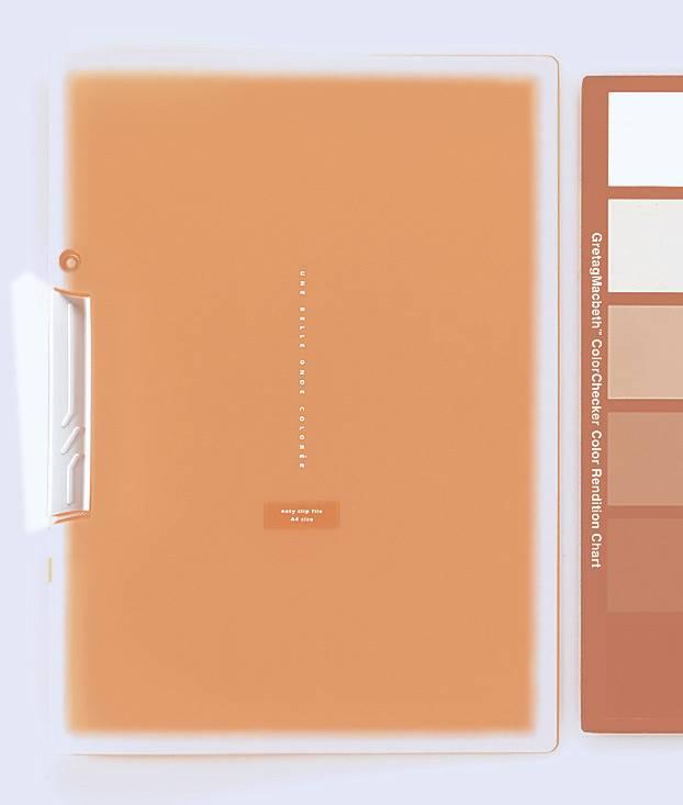 Папка с клипом Kokuyo Coloree F-VFH100YR оранжевый - фото 1
