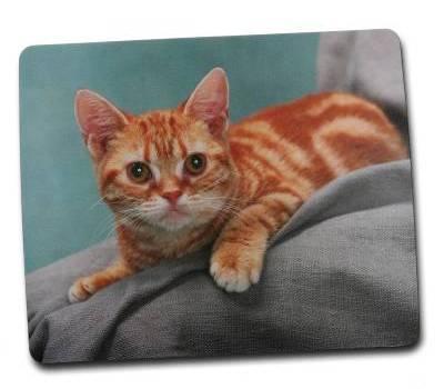 """Коврик для мыши  SK04 """"Рыжая кошка"""" - фото 1"""